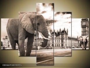 Sloni v Londýně