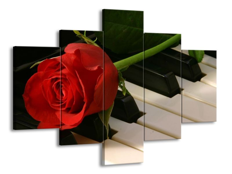 Růže na klavíře