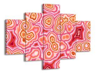 Růžové buňky