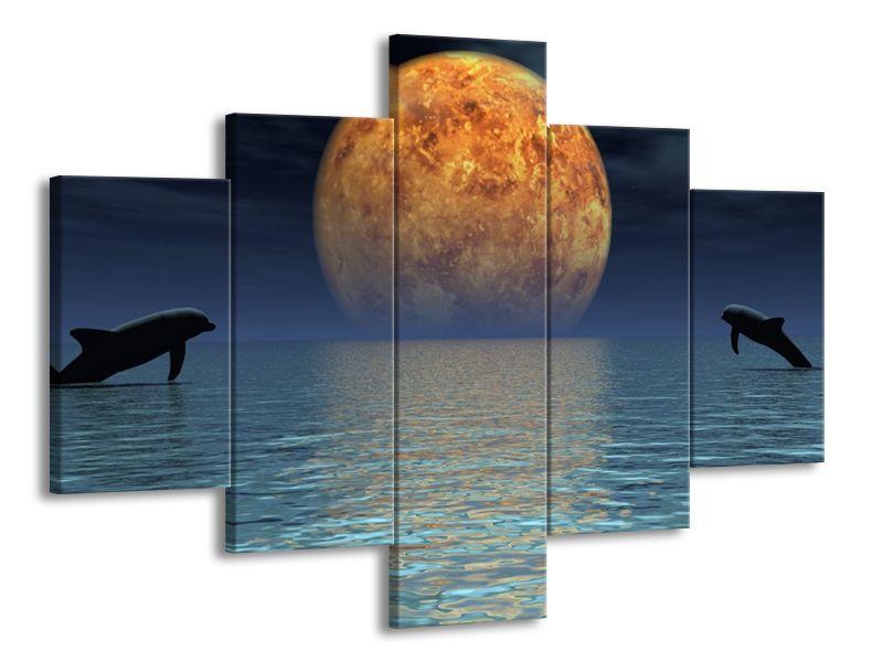 Delfíni a měsíc
