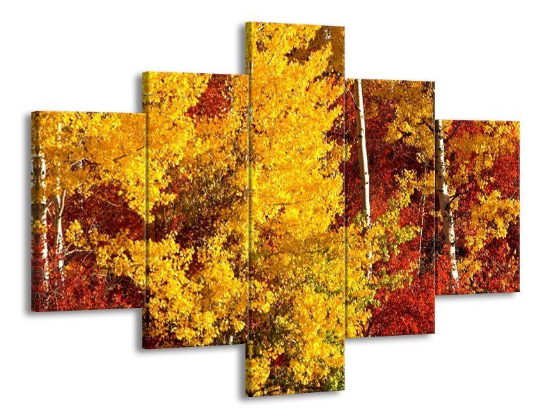 Pestrobarevný podzim