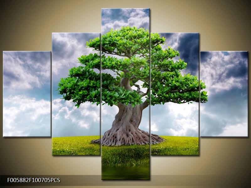 Strom na zelené louce