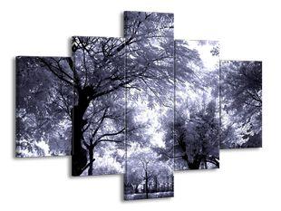 Stromy studený efekt