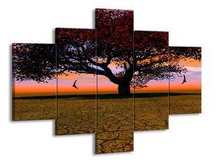Strom a půda