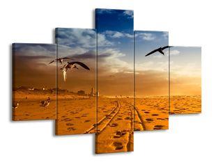 Ptáci v poušti