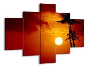 Palmy a slunce