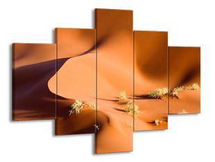 Pouštní duna