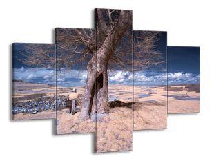 Usychající strom v poušti