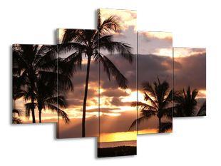 Palmy a západ slunce