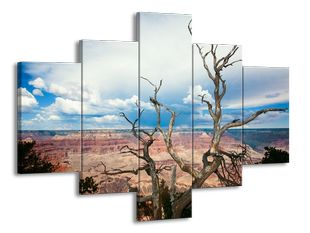 Uschlý strom 2