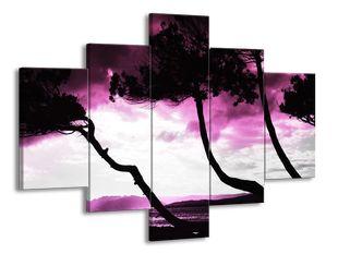 Osamělé stromy