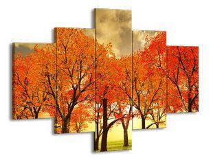 Pozdzimní barvy