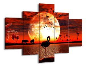 Plameňák a západ slunce