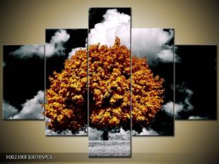 Strom v podzimní náladě