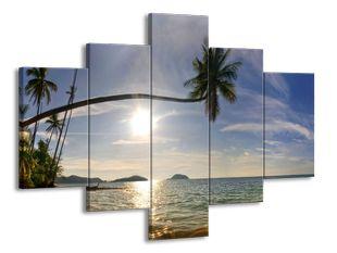 Palmový ráj