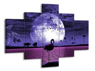 Fialové safari