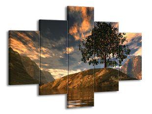 Strom na skále v horách