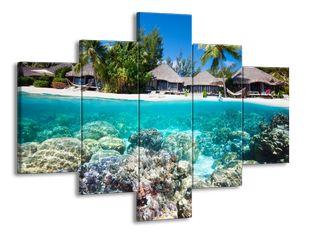 Korálový ráj
