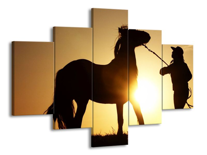 Kuň a kovboj