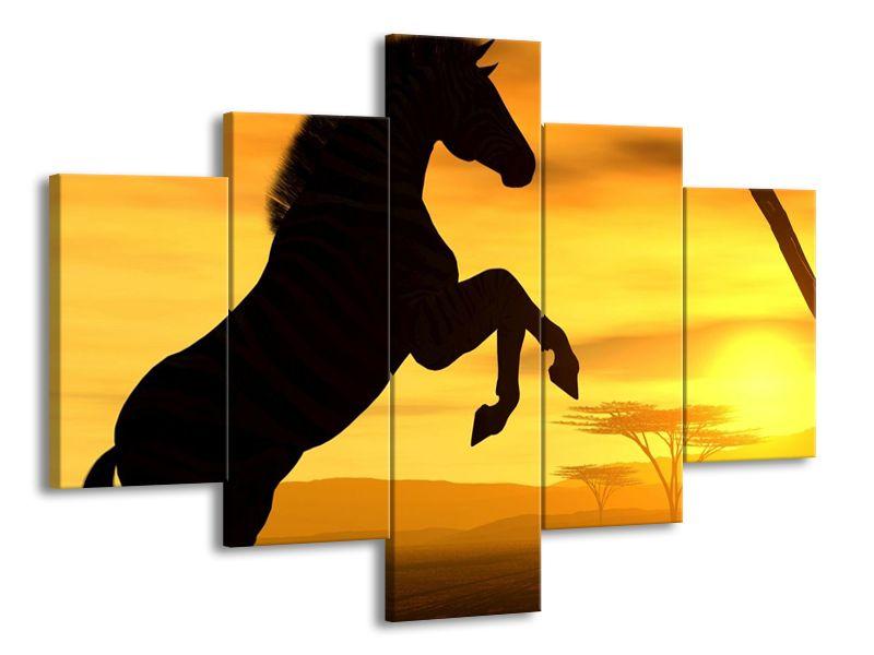 Kůň při západu slunce 2