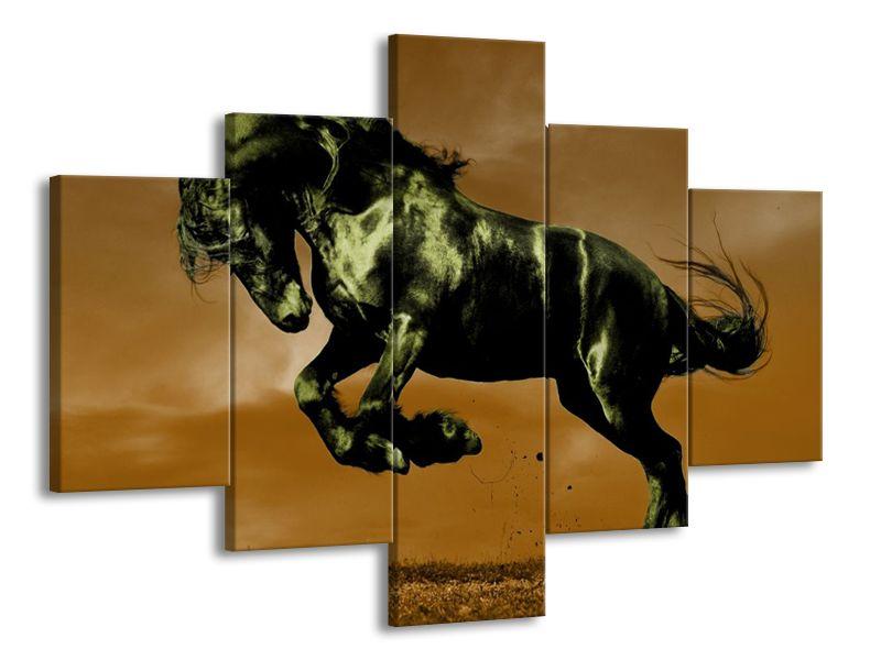 Černý kůň ve skoku