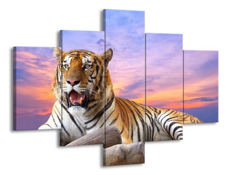 Tygr za soumraku