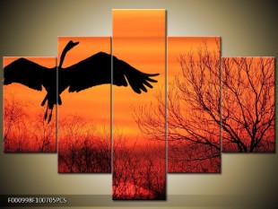 Letící pták v západu slunce