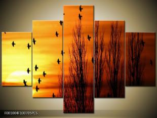 Ptactvo při západu slunce