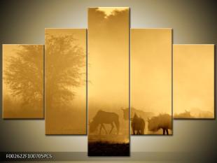 Stádo zvířat na pastvě