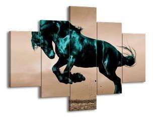 Lesklý černý kůň ve skoku