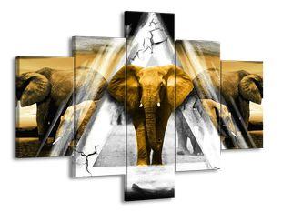 Slon a trojúhelník