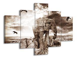 Sloní skála
