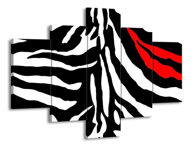 Červený pruh zebry