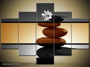 Bílá květina na kameni