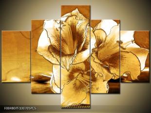 Květy amarylisu