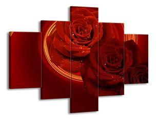Růže v řadě