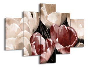 Kvetoucí tulipány