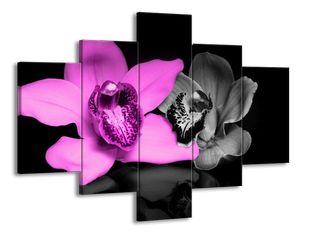 Utržené květiny