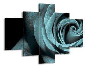 Modrá růže