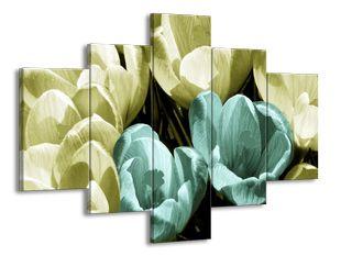 Rostoucí tulipány