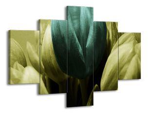 Zástup tulipánů