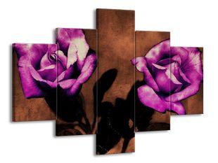 Stíny růží