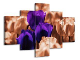 Roztoužené tulipány