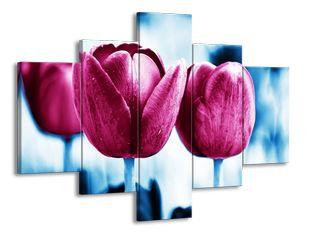 Malinové tulipány
