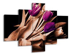 Mokré tulipány