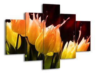 Rozlité tulipány
