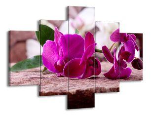 Růžová květiny