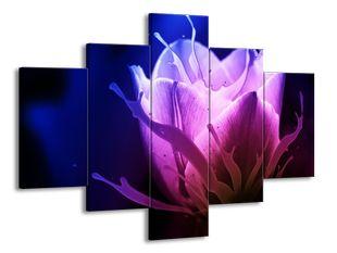 Rozevlátý květ