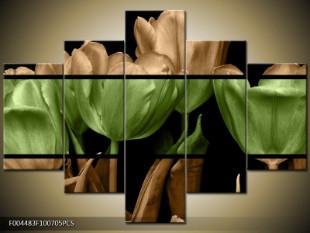 Tulipány dvoubarevně