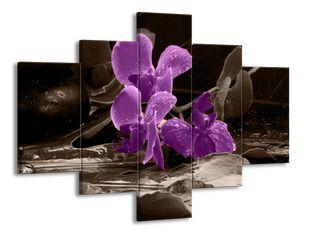 Fialová květina ve vodě